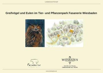 Broschüre Greifvögel in der Fasanerie (PDF | 1,54 MB)