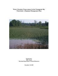 Water Chestnut (Trapa natans) in the Chesapeake Bay Watershed ...