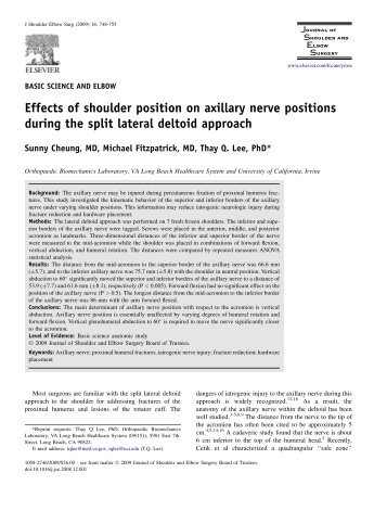 Effects of shoulder position on axillary nerve positions during the ...