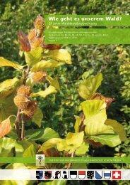 Wie geht es unserem Wald? - Institut für Angewandte Pflanzenbiologie