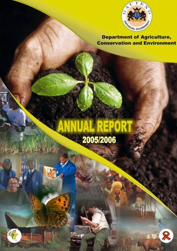 Net Annual Report - Gauteng Online