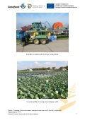 Hollannin viljelijämatkan raportti - Satafood Kehittämisyhdistys ry - Page 7
