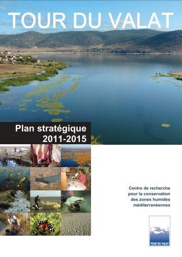 Plan stratégique 2011-2015 - Tour du Valat