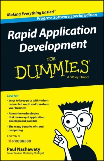 rapid-application-development-for-dummies-ebook