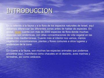 INTRODUCCION - Noam