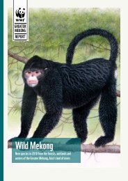 Wild Mekong: New species in 2010 from the - WWF