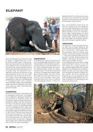 Jagdkatalog 2012 Seite 86 - 87 -