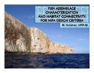 Feb 2006 (PDF) - Caribbean Coral Reef Institute (CCRI)