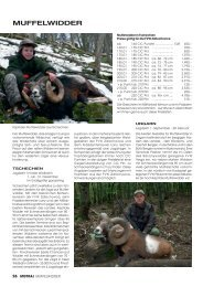 Jagdkatalog 2012 Seite 24 - 27