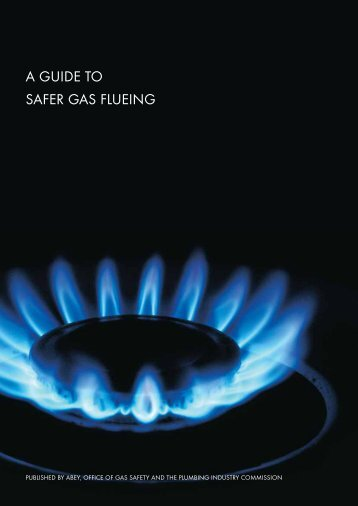 A GUIDE TO SAFER GAS FLUEING - Energy Safe Victoria (PDF)
