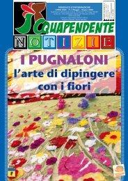 Maggio - Giugno 2009 - Comune di Acquapendente