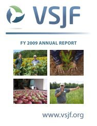 2009 VSJF Annual Report - Vermont Sustainable Jobs Fund