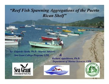 Feb 2006 (PDF) - Caribbean Coral Reef Institute (CCRI)