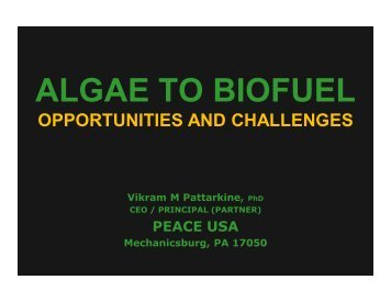 Algae to Biofuel: Opportunities and Challenges