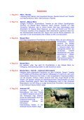 KENYA Safari - Seite 2