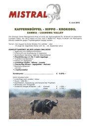 KAFFERNBÜFFEL - HIPPO - KROKODIL