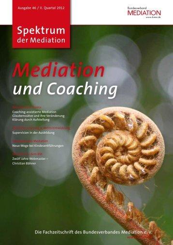 und Coaching - SDM-FSM