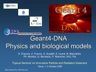 Geant4 Space Workshop - DNA