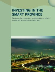 INVESTING IN THE SMART PROVINCE - Gauteng Online