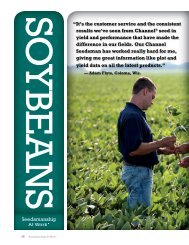 Download 2014 Soybean Products - Channel® Seed Brand   Corn ...