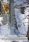 Dezastrul Total al protecției animalelor de pradă În lumea ... - AGVPS - Page 2