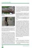 Wie machen es die Amerikaner? - Urban Forest Analytics - Seite 7