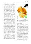 La Grande Noctule Nyctalus lasiopterus (Schreber ... - Le Vespère - Page 4