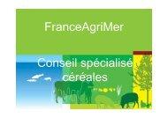 06 - Présentation blé dur - juillet 2015