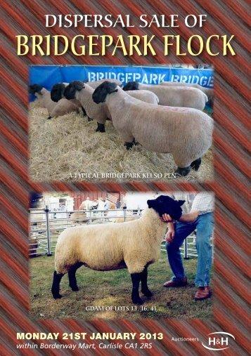 BriDgepark flock - Harrison & Hetherington