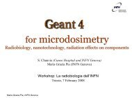 Geant4 Space Workshop - DNA - Cern
