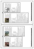 D6 - Suplemento No Oficial - Enciclopedia Especies - x2.pdf - Baykock - Page 7
