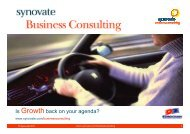 Synovate Business Consulting - Eurocham