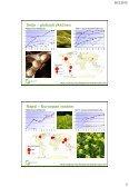Mahdollisuudet kasvattaa valkuiaiskasvien tuotantoaloja, Pirjo ... - Page 3