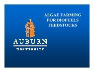 ALGAE FARMING FOR BIOFUELS FEEDSTOCKS