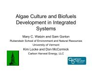 Algae Culture and Biofuels Development in Integrated Systems
