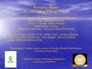 Pumping Algae! An Alternative Energy Future