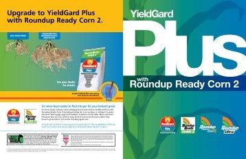 YieldGard Plus with Roundup Ready Corn 2 Brochure - Monsanto
