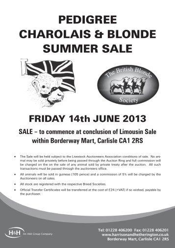 pedigree charolais & blonde summer sale - Harrison & Hetherington