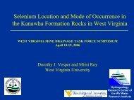 Presentation - West Virginia Mine Drainage Task Force