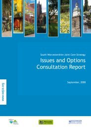 Issues and Options Consultation Report - South Worcestershire ...