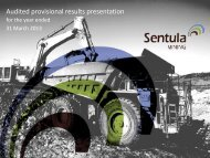 Audited provisional results presentation - Sentula