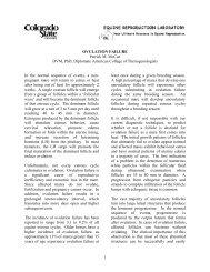 OVULATION FAILURE Patrick M. McCue DVM, PhD, Diplomate ...
