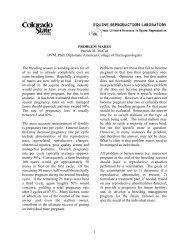 PROBLEM MARES Patrick M. McCue DVM, PhD, Diplomate ...