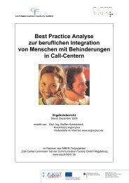 Best Practice Analyse zur beruflichen Integration von Menschen mit ...