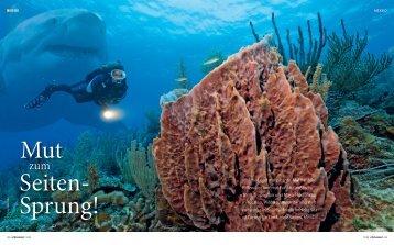 Tauchen in Indonesien! - Nautilus Tauchreisen