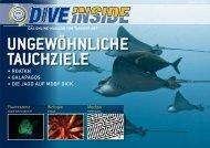 Niederländische Karibik - Nautilus Tauchreisen