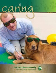Caring Magaine - Summer 2013 - College of Veterinary Medicine ...