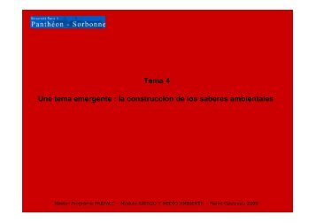 Tema 4 Une tema emergente : la construcción de los saberes ...
