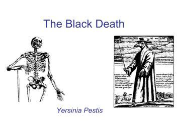 the black plague essays The black death has always been something that has intrigued me on the tab above labeled black death essay, you can learn more about the impacts of all three.