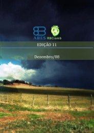 EDIÇÃO 11 - Dezembro/08 - RBCIAMB